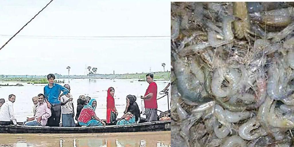 Fishing on koshi barrage